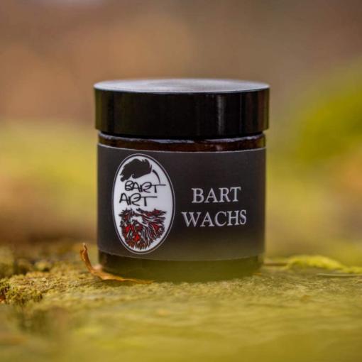 BARTART Bart Wachs